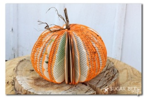 recycled project pumpkin